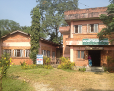 Agriculture & Forestry University, Rampur