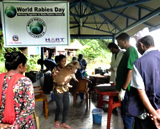 Begnas Lake neutering & vaccination camp