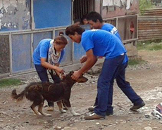 Anti-rabies vaccination in Bharatpur