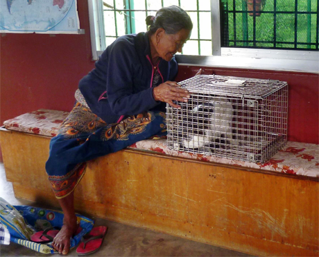 Bhunti and her elderly owner
