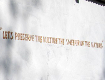 "The slogan on the wall of the Vulture Observatory reads ""Let's preserve the vulture, the sweeper of the nature"""