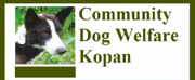 Community Dog Welfare Kopan