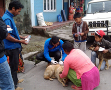 The 2014 MARV campaign in Pokhara was started in late March
