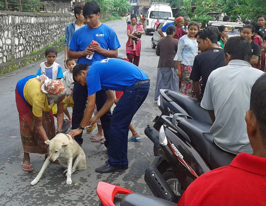 Anti-rabies vaccinations on the streets of Pokhara