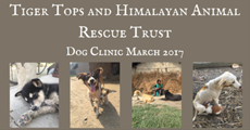 Tiger Tops & HART Dog Clinic March 2017