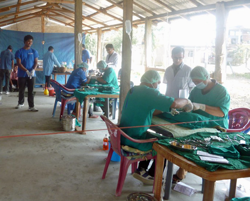 The large number of veterinary staff participating enabled us to run two operating tables